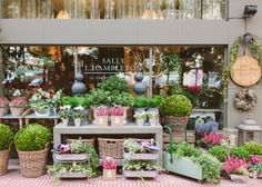 Sally Hambleton The Workshop Flores / Madrid. Fotos interior y exterior tienda