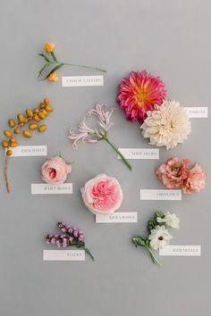Modern foodie wedding at the Fig House Flower Farm, Flower Aesthetic, Arte Floral, Types Of Flowers, Flower Arrangements, Party Wedding, Cake Wedding, Flower Power, Paper Flowers