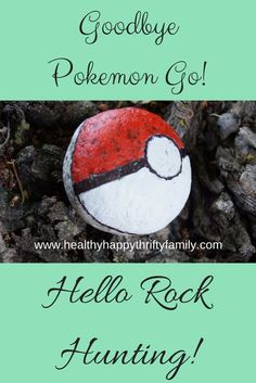 Rock Hunting - the new low-tech version of Pokemon Go