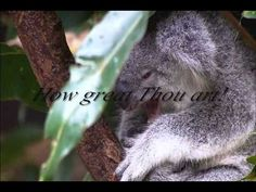 How Great Thou Art! (Maranatha with lyrics)