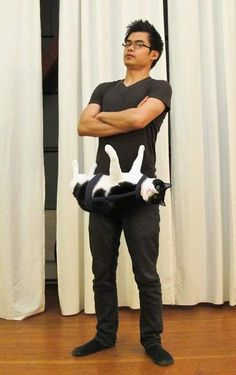 Brilliant idea.  I wonder how long it will take for the cat to twist around to get away and injure this poor man horribly?
