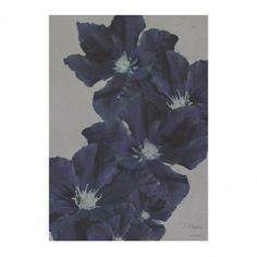 Vykort kort House of Beatniks klematis blomma blå