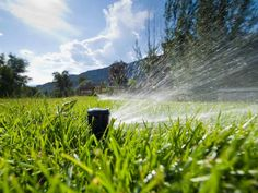 Water adds another dimension to your landscaping. Install a reliable irrigation system to maintain a healthy lawn or water features to add beauty. Get started with these tips from HGTV.com