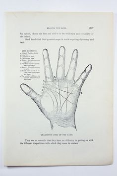 1923 Human Anatomy Illustration - Character Lines of the Hand