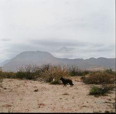 ©angélica escoto, Tijuana-FOTOGRAFIA