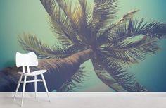 california-palm-beach-room