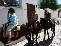 donkey riding in Mykonos! best experience of my life!