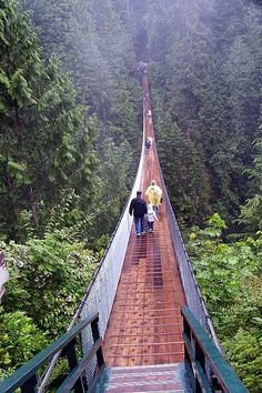 Capilano suspension bridge Canada vancouver This was a bucket list item, I'm afraid of heights! It was awesome!