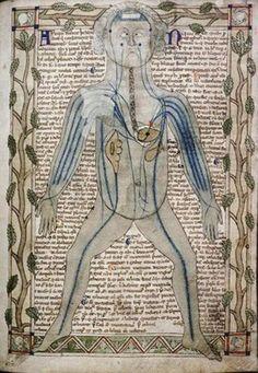 Medical Miscellany 13th century MS Ashmole 399 fol_ 1r ____rsl_ox_ac_uk