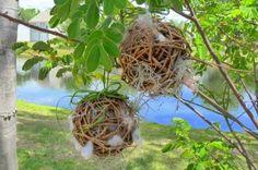Nesting balls for the birds!!!