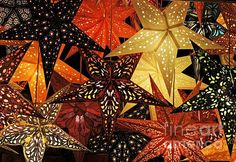 Christmas stars made of paper - just beautiful! This image is available as a greeting card - how cool and different would that be?