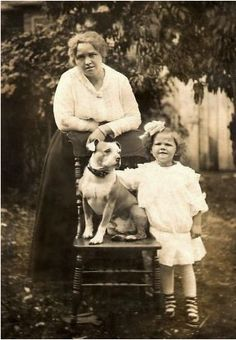 Bronwen Dickey's search for answers takes her from nineteenth-century New York dogfighting pits to early twentieth‑century movie sets, from the battlefields of Gettysburg to struggling urban neighborhoods. In this illuminating story of how a popular breed became demonized--and what role humans have played in the transformation. #pitbull #dogs