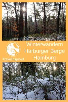 Wandern in den Harburger Bergen in Hamburg lohnt sich zu jeder Jahreszeit. Im Frühling strahlt die Natur in verschiedenen Grüntönen, im Spätsommer blühen die Heideflächen lila, im Herbst kannst du durch Laub rascheln und im Winter durch Schnee stapfen. Die Harburger Berge sind Teil des Regionalparks Rosengarten. Der ausgeschilderte Wanderweg W1 Harburger Berge ist eine schöne Rundwanderung durch die Waldgebiete Emme und Haake hinüber zur Neugrabener Heide.