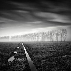 Long Exposure Tree Photography by Pierre Pellegrini