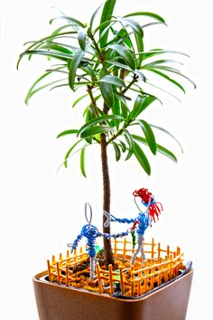 Lovers decorated plant for home decor. Man and woman figures has been built by paperclips.