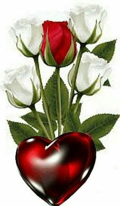 Beautiful Love Images, Love Heart Images, Beautiful Flowers Wallpapers, Beautiful Rose Flowers, Love Rose, Pretty Wallpapers, Amazing Flowers, Love Flowers, Rose Flower Wallpaper