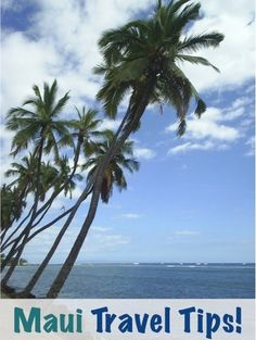 Maui Travel Tips - has great links to recommendations.  The Road to Hana link to Frommers is good.