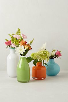 Color pop bud vases