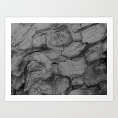 Collect your choice of gallery quality Giclée, or fine art prints custom trimmed by hand in a variety of sizes with a white border for framing. Tree Bark, Fine Art Prints, Tapestry, Gallery, Jewelry, Hanging Tapestry, Tapestries, Jewlery, Roof Rack