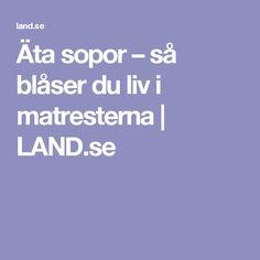 Äta sopor – så blåser du liv i matresterna | LAND.se