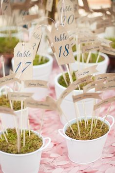 escort card display, little flags on sticks in tiny pots of moss, classic Southern navy and pink wedding, Robyn Van Dyke Photography
