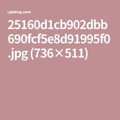 25160d1cb902dbb690fcf5e8d91995f0.jpg (736×511)