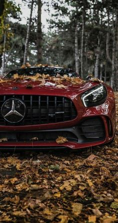 Ferrari red Mercedes-AMG GT in the forest. High-end luxury sport cars Mercedes Benz Amg, Carros Mercedes Benz, Mercedes Auto, Benz Car, Bmw Autos, Autos Toyota, Toyota Cars, Toyota Prius, Carros Lamborghini
