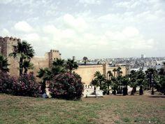 Volunteer programs in enchanting Morocco with Love Volunteers! Volunteer Programs, Amazing Destinations, Volunteers, Morocco, Enchanted, Dolores Park, Sidewalk, Love, Travel