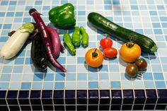 Fresh caught fresh summer vegetables.  It is possible to learn the recipes to taste the season every season.