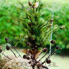 ¡La naturaleza está de moda! decora tus espacios con objetos que te traigan la frescura de los árboles, las plantas, el musgo y las pequeñas aves, que al verlas te alegren el día  #Ideas #Conceptual #Naturaleza #Natural #Decoración