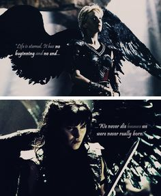 The Angels. Human/bird hybrids created by the Government. Created to obey orders without question.