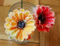 DIY Crystal borax flowers!  Grow crystals on flowers!  Fun science and art activity!