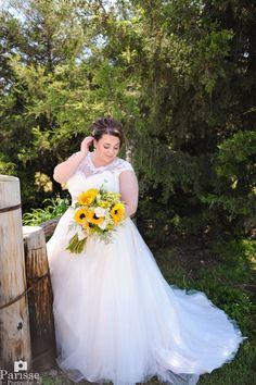 Plus Size Wedding Dress Kansas City