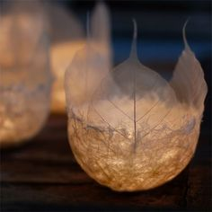 .... leaf candle form for a fairy lit wedding