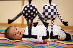 GREAT Black and White toys from www.wuddlyworld.com