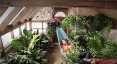 Grow Food Year Round With Radically Sustainable Passive Solar Greenhouse | EndoRiot