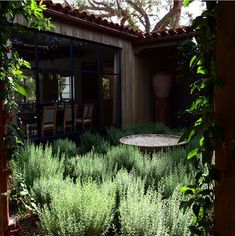 rosemary courtyard