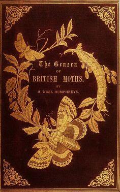 The Genera of British Moths.