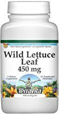 Despite wild lettuce's powerful opiate and painkilling properties, it is also well-known for a variety of other healing benefits.
