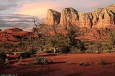 Home to people, Sedona is one of the most left-leaning communities in the United States set among 19 square miles of striking red rocks that resemble a Martian landscape Landscape Photos, Landscape Paintings, Landscape Photography, Zimbabwe History, Places To Travel, Places To Visit, Sedona Red Rock, Mountain Pictures, Southwest Usa