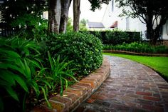 Traditional Garden District 6