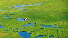 sur-les-rives-du-lac-de-nino