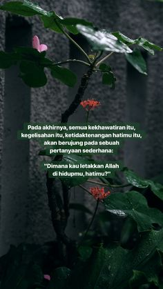 18 Ideas quotes indonesia islam allah for 2019 Reminder Quotes, Words Quotes, Book Quotes, Me Quotes, Qoutes, Sayings, Hadith Quotes, Muslim Quotes, Quran Quotes
