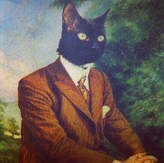 Cat in a Suit #kafka #metamorphosis