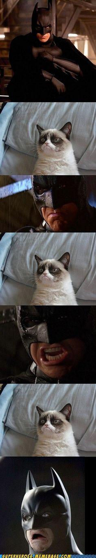 No Grumpy Cat Cumberbatch