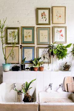 Botanical prints, big laundry sinks, faucets, plants