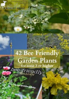 Things May Improve If You Transform Your Garden Area With The Bees In Mind According