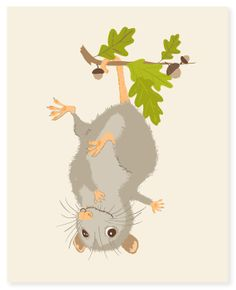 opossum  woodland art print 8x10  nursery art by SeaUrchinStudio, $15.00