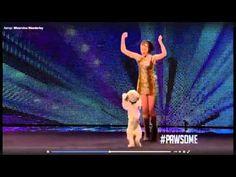 Танцы с собаками видео | Немецкий боксер