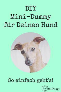 DIY Mini Dummy für Deinen Hund.